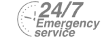 24/7 Emergency Service Pest Control in Molesey, East Molesey, West Molesey, KT8. Call Now! 020 8166 9746